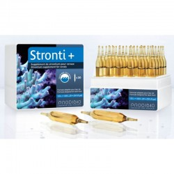 Prodibio Stronti+ 1 ampułka