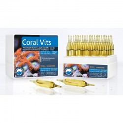 Prodibio Coral Vits 1 ampułka